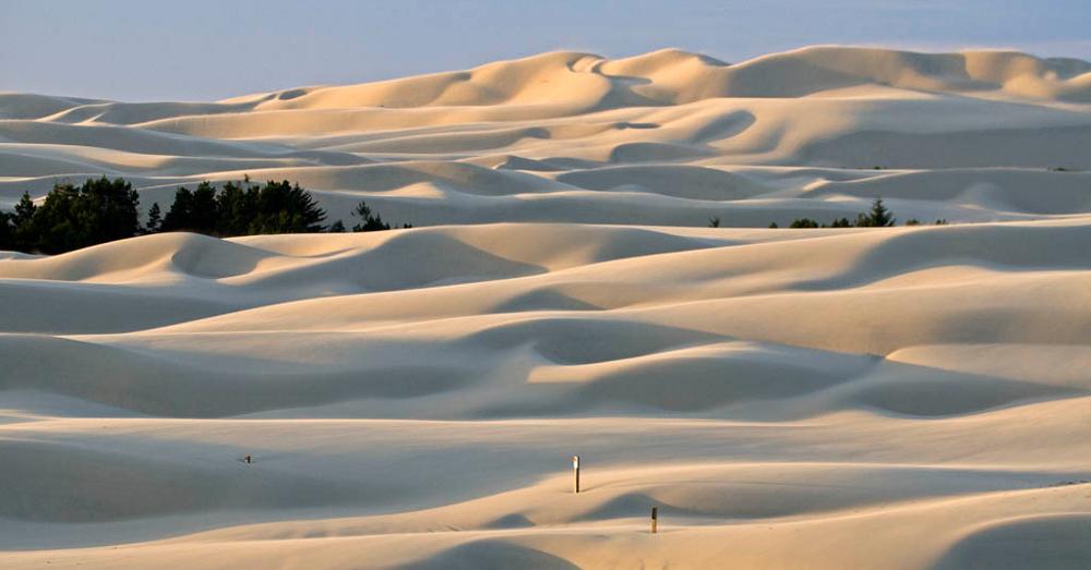 Sand Dunes, Oregon (resized)