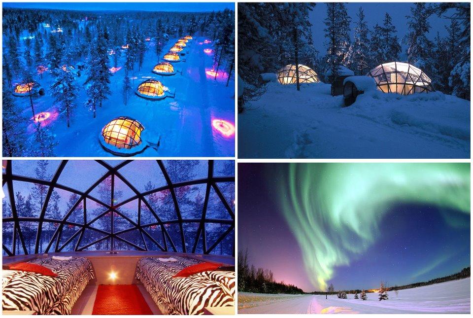Iceland Northern Lights Igloo Hotel Iceland Northern Lights Igloo Hotel  Google Search .